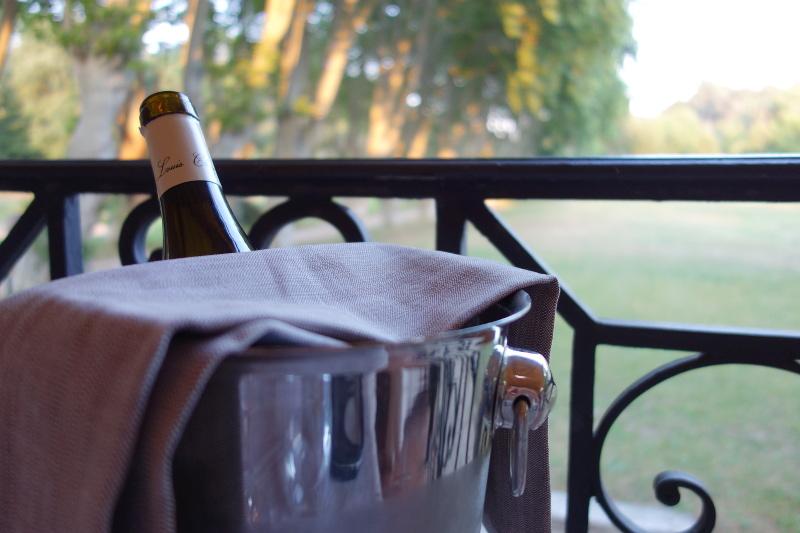 Repas vin Moulin de Vernegues