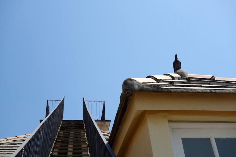 Mirador Palazzo Rosso