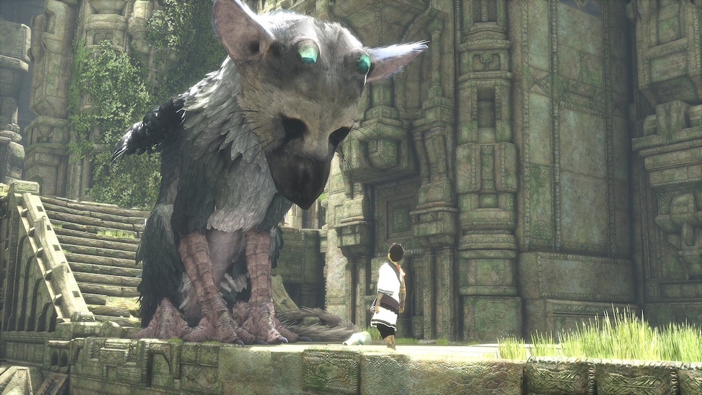 boy_trico_face_to_face